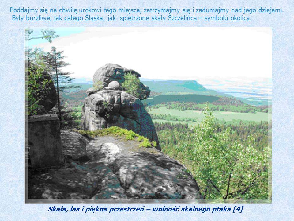Skała, las i piękna przestrzeń – wolność skalnego ptaka [4]